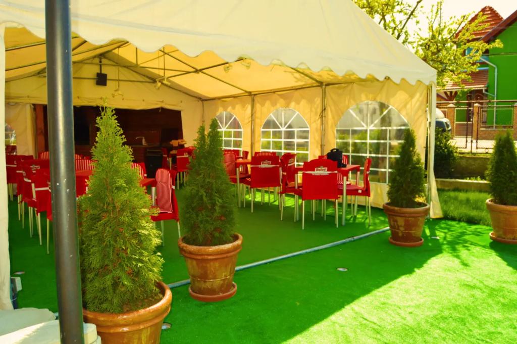 venesis-house-sighisoara-garden-chairs-tabels-green-view