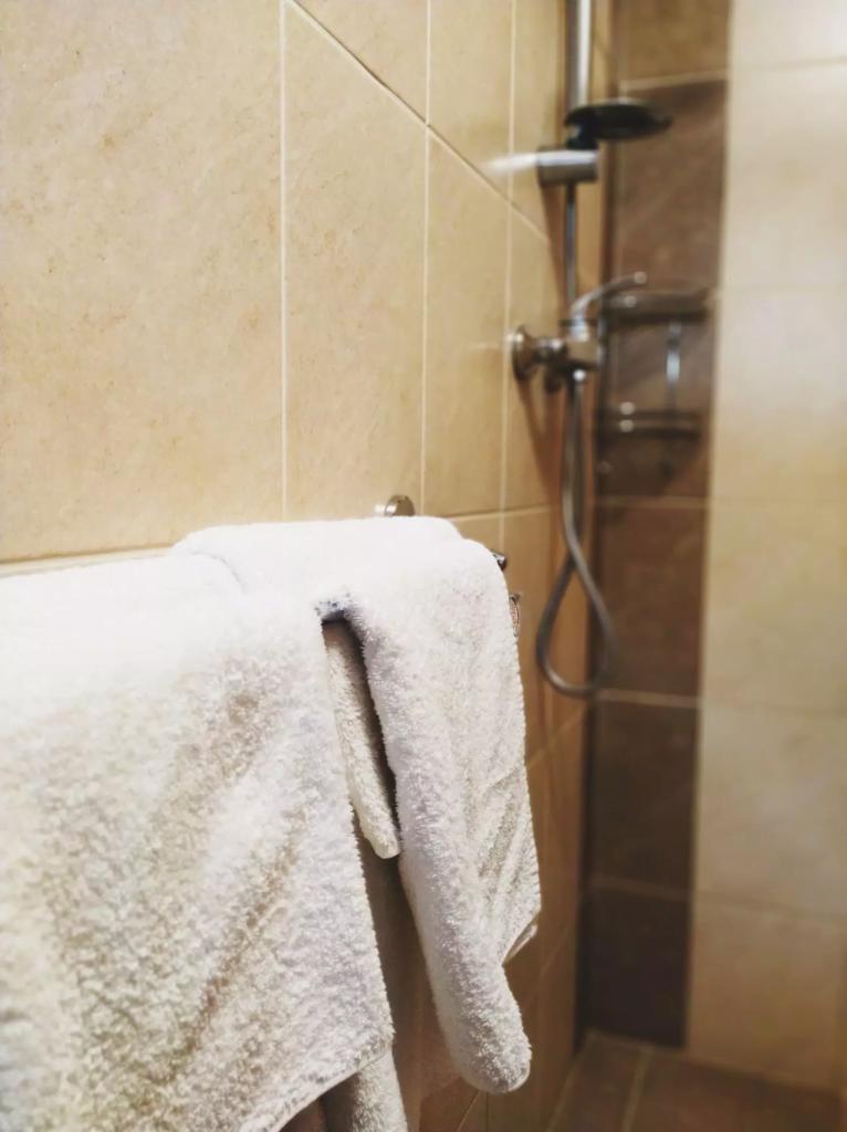 venesis-house-sighisoara-room-no-2-bathroom-towels