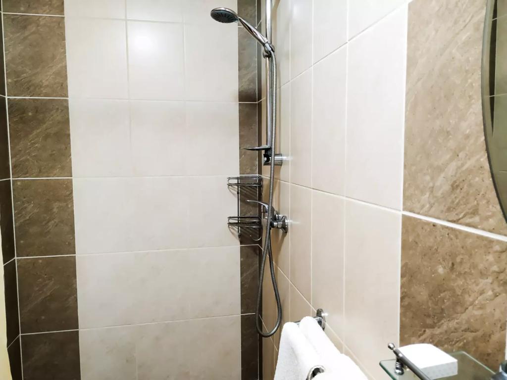 venesis-house-sighisoara-room-no-3-twin-room-bathroom-shower-2