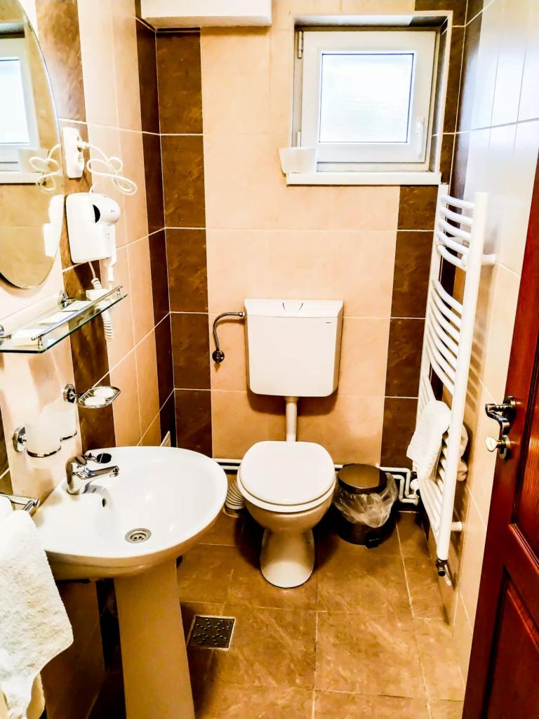 venesis-house-sighisoara-room-no-4-double-room-bathroom-sink-toilet-mirror-towels-toiletries
