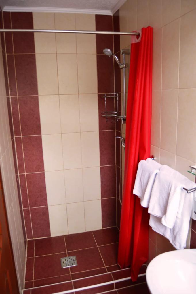 venesis-house-sighisoara-room-no-9-bathroom-shower